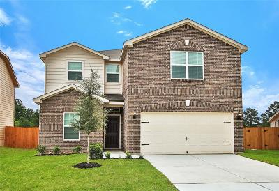 Houston Single Family Home For Sale: 10531 Pine Landing Drive