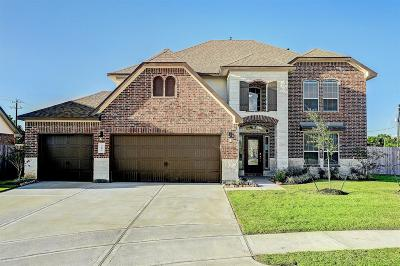 Pearland Single Family Home For Sale: 3693 Hughes Court