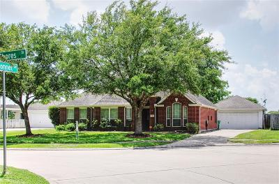 Pearland Single Family Home For Sale: 2504 Sunny Shores Drive
