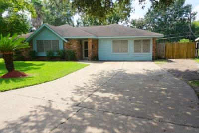 Deer Park Single Family Home For Sale: 709 E Brown Lane