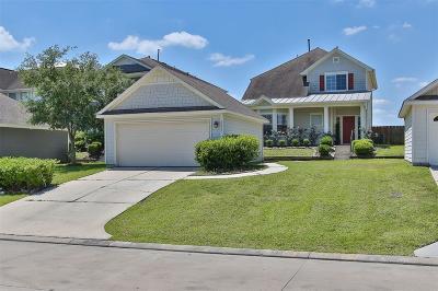 Willis Single Family Home For Sale: 10817 S Lake Mist Lane