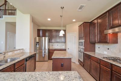 Sugar Land Single Family Home For Sale: 2311 Wicklowe Street