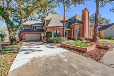 Houston Single Family Home For Sale: 4510 Sylvan Glen Drive