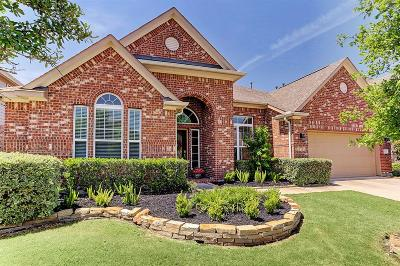 Katy Single Family Home For Sale: 10619 Hollowback Drive