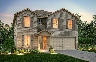 Houston Single Family Home For Sale: 6623 Brimridge Lane