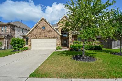 Katy Single Family Home For Sale: 4810 Emily Forest Trail