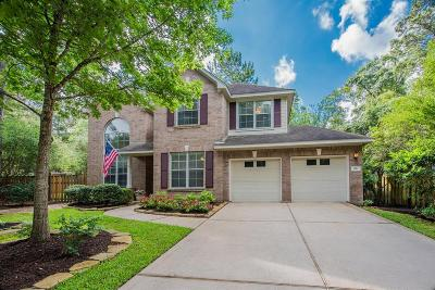 The Woodlands Single Family Home For Sale: 66 Alden Glen Drive