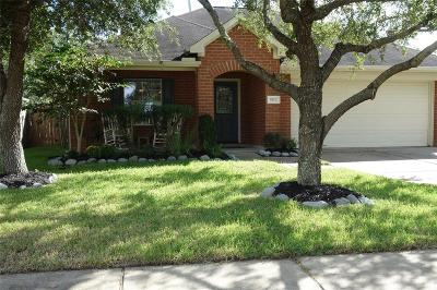 Pearland Single Family Home For Sale: 5312 Palo Duro Drive
