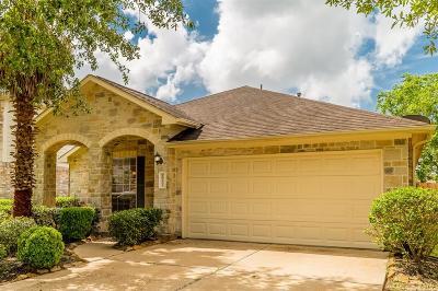 Katy Single Family Home For Sale: 18203 Sweet Juniper Lane