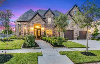 Missouri City Single Family Home For Sale: 9803 Mount Whitney