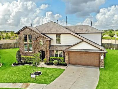 Fort Bend County Single Family Home For Sale: 9434 Limestone Ranch Lane