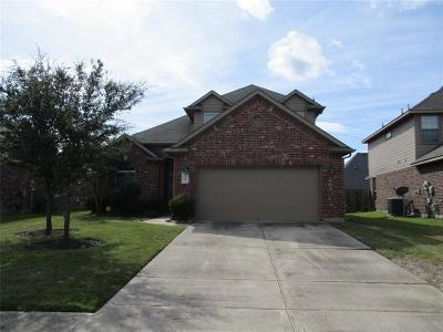 Fort Bend County Single Family Home For Sale: 9210 N Cavalier Lane N