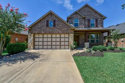 Tomball Single Family Home For Sale: 12510 Ember Village Lane