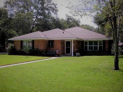 Houston Single Family Home For Sale: 703 W Sleepyvale Lane