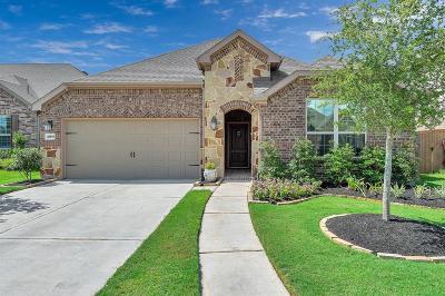 Katy Single Family Home For Sale: 23815 Mesia Meadow Lane