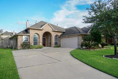 Katy Single Family Home For Sale: 9630 Ralston Bend Lane