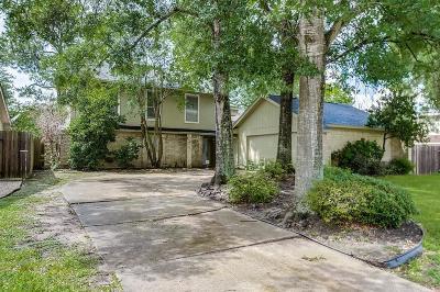 Houston Single Family Home For Sale: 15810 Fern Basin Drive