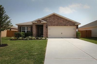Rosenberg Single Family Home For Sale: 2415 Golden Brandy Lane