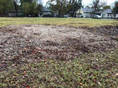 Houston Residential Lots & Land For Sale: 2602 Terry Street