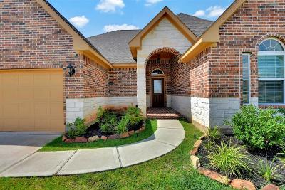 Single Family Home For Sale: 19019 Minero Lane