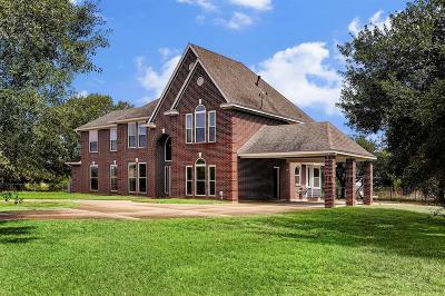 Fulshear Single Family Home For Sale: 6011 Sprigg Street