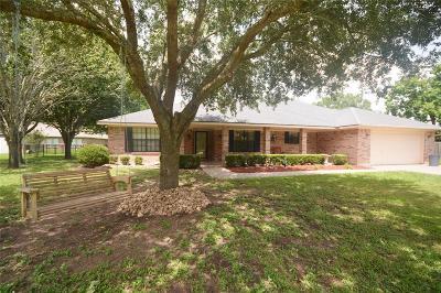 Brazoria Single Family Home For Sale: 227 Camellia Drive
