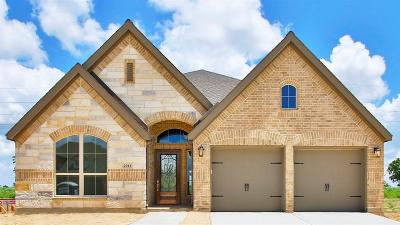 Manvel Single Family Home For Sale: 2043 Blackhawk Ridge Lane