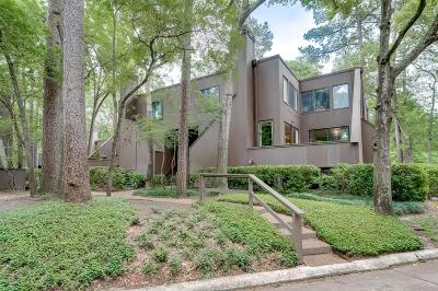 Houston Condo/Townhouse For Sale: 183 Litchfield Lane
