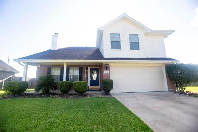 Pearland Single Family Home For Sale: 1010 Andover Dr Drive