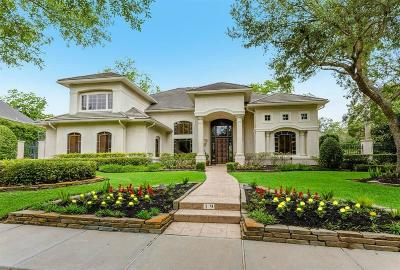 Sugar Land Single Family Home For Sale: 19 Legend Park Drive