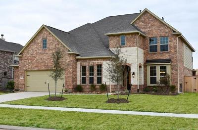 Sugar Land Single Family Home For Sale: 2219 Cranbrook Ridge Lane