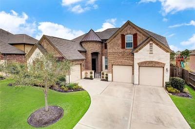 Pearland Single Family Home For Sale: 3404 Leafstone Lane