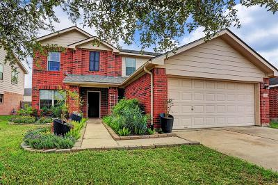 Katy Single Family Home For Sale: 3834 Brighton Springs Lane