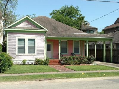 Houston Single Family Home For Sale: 1732 Indiana Street