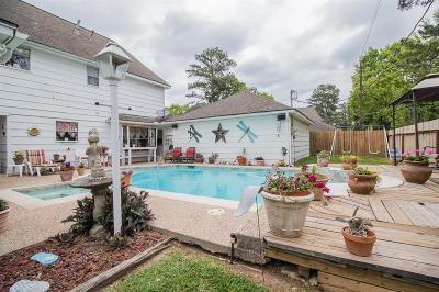 Houston Single Family Home For Sale: 4103 Seastone Lane