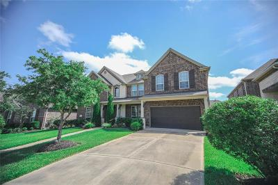 Katy Single Family Home For Sale: 3415 Leaning Willow Drive