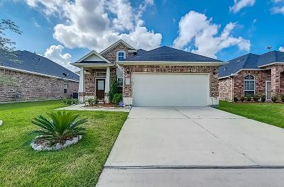 Katy Single Family Home For Sale: 24731 Colonial Elm