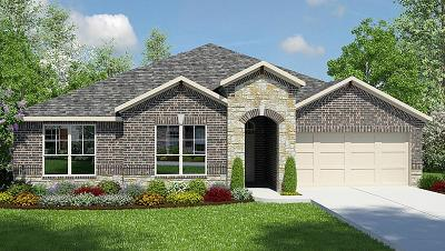 Single Family Home For Sale: 30719 Raleigh Creek