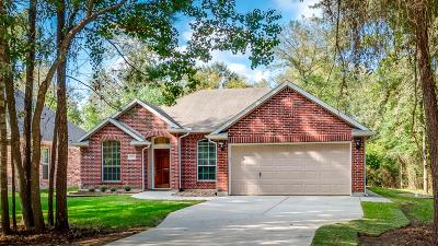 Single Family Home For Sale: 7022 Black Forest Drive