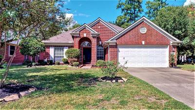 Tomball Single Family Home For Sale: 17411 Granberry Gate Drive