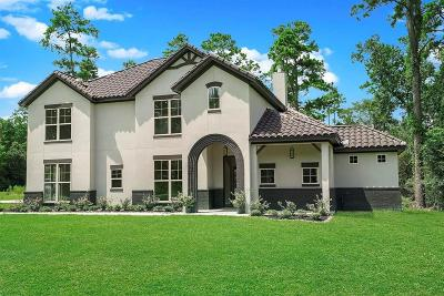 Tomball Single Family Home For Sale: 25203 Wilkes Park