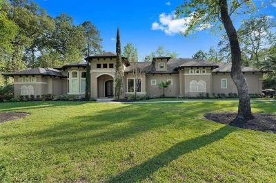 Spring Single Family Home For Sale: 3922 Epic Drive