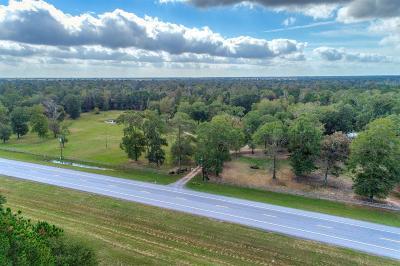 Conroe Farm & Ranch For Sale: 17944 Highway 242