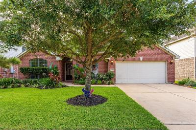 Rosenberg Single Family Home For Sale: 703 Stubbs Bend Dr