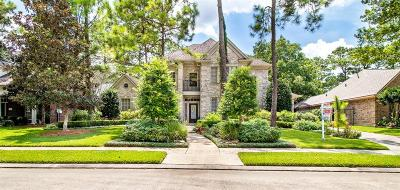 League City Single Family Home For Sale: 141 Creekside Drive