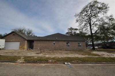 Houston Single Family Home For Sale: 13403 Highland Castle Lane