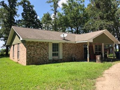 Polk County Single Family Home For Sale: 253 Gettysburg Drive