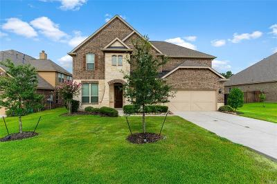 Tomball Single Family Home For Sale: 22407 Pine Tree Drive
