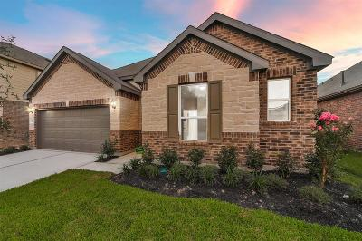 Houston Single Family Home For Sale: 15407 Rosehill Summit Lane