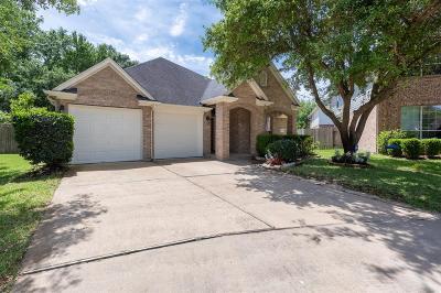 Houston Single Family Home For Sale: 610 Bondi Court